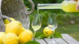 Лимончелло: рецепт на водке, самогоне и спирту