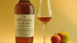 Кальвадос (яблочная водка): как правильно пить и чем закусывать