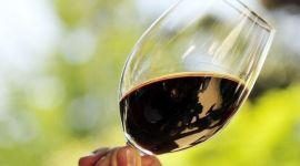 Безалкогольное вино: красное, белое и игристое