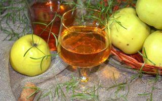 Вино из яблок: как сделать в домашних условиях