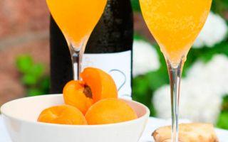 Абрикосовое вино: простой рецепт приготовления домашнего вина